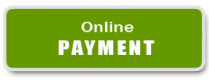 payment-button